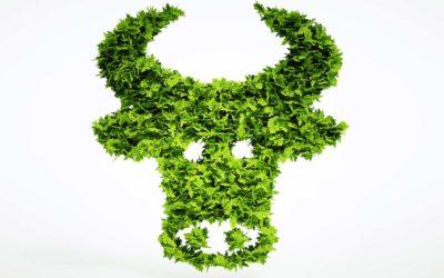 Markt für Pflanzenproteine wächst bis 2024 auf 2,6 Mrd. Euro